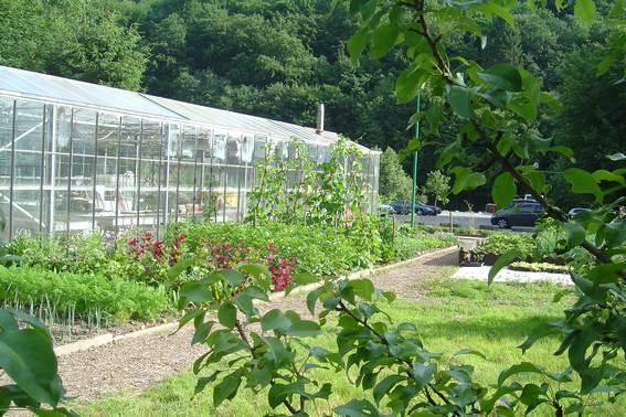 Le potager du burnot cpas profondeville for Jardins et services